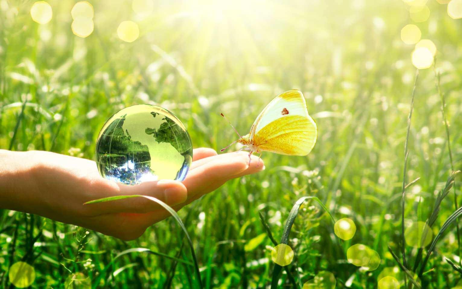 domotherapie environnement
